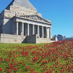 The Shrine on Remembrance day, 2017. Complete with handmade poppy field.