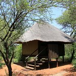 Photo of Mosetlha Bush Camp & Eco Lodge