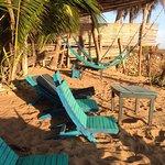 Foto de Bambú Ecocabañas