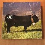 Photo de La Vache Qui Vole