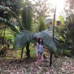 Bilde fra Kanita Resort & Camping