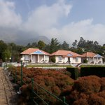 Holiday Heaven Munnar Picture