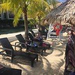 Foto de Secrets Wild Orchid Montego Bay