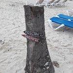 Photo de Natura Park Beach - EcoResort & Spa