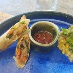 Half of my lunch (Vegetarian spring rolls, divine)