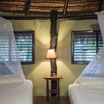 The treetop suite