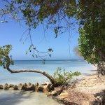 Foto de Baru Playa Eco Beach Resort