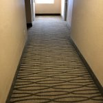 outdated carpet/walls