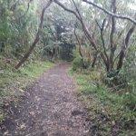 Foto de Parque y Jardines de Cerro Chato ANC