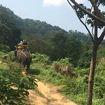 Elephant trek overseeing the ocean