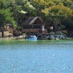 Photo of Punta Laguna Nature Reserve