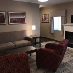 Large King Jr Suite with 1 king bed, mini-fridge, gas fireplace, pullout sofa-bed