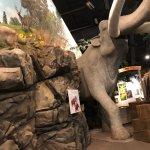 Foto de Columbia Gorge Discovery Center & Museum