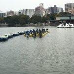 Photo de Ohori Park
