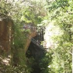 Foto de Hacienda Guachipelin
