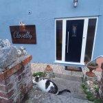 Clovelly Guest House Photo