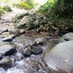 Lepoh Waterfalls