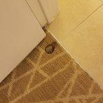 Foto de The Point Hotel & Suites