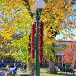 red chilis decorated the lampposts along the Plaza
