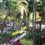 Foto de Palita Lodge