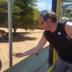 Safari Ostrich Farm - Oudtshoorn