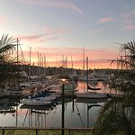 Foto de Best Western Plus Island Palms Hotel & Marina