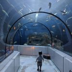 Photo of Aquarium du Quebec