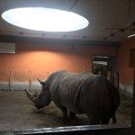 Photo of Budapest Zoo & Botanical Garden