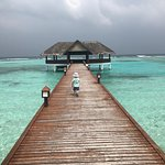 Palm Beach Island Resort & Spa Foto