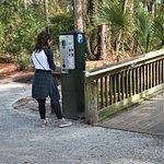 Folly Field Beach Park Foto
