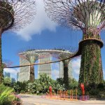 Gardens by the Bay is an amazing place to visit. A must in Singapore!