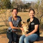 Tiger Safari Zoological Park