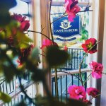 Caffé Marche is perfect for all seasons