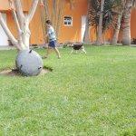 Jardín de la Posada de Huarmey, Pet Friendly