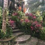 Foto de Soulshine Bali