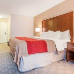 Photo de Comfort Inn Fallsview