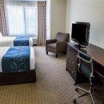 Foto de Comfort Suites University Area
