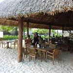 Photo of Mr Sanchos Beach Club Cozumel