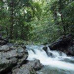 Cascades Rio Tatin