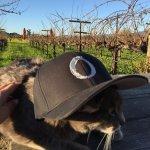 O'Brien Estate Wineryの写真