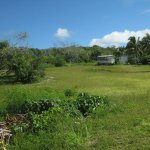 Photo of Lifou Island