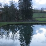 Reflecting a winter sky