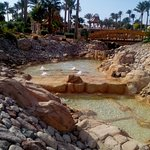 Foto de Parrotel Beach Resort