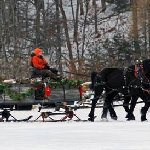 Sleigh rides available throughout the winter months.