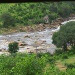Foto de Ruaha National Park
