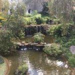 Foto de Hotel Vista Real Guatemala