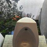 Туалет у бассейна