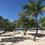 Main beach area near Royal Palm restaurant.