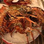 """Lobster """"at home"""""""