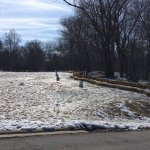 2 snowmen that were melting in a field at Scioto Park.